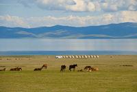 Son Kul meer Kirgizië