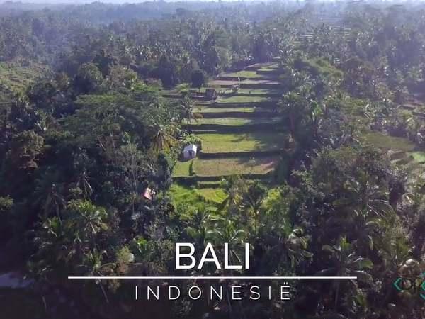 Proef de sfeer van Bali met Djoser