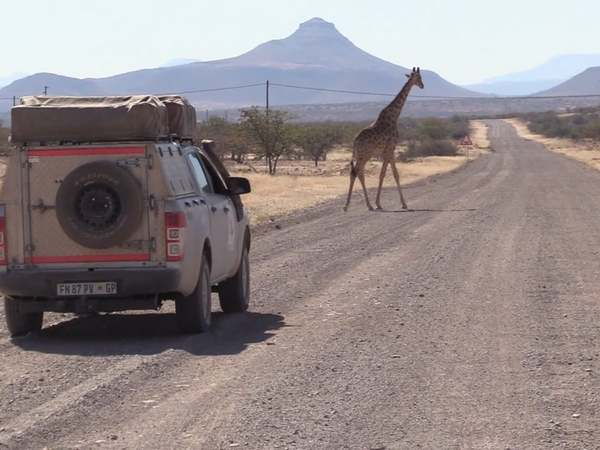 Selfdrive Namibië Djoser Family