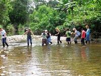 Rivier Jungle Ecuador
