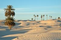 Tozeur woestijn Tunesië
