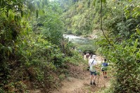 Toraya NP Colombia