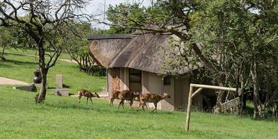 Accommodatie Zuid-Afrika