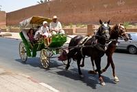 Paard en wagen Marrakech Marokko