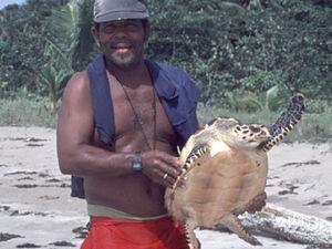 Tortuguero National Park - schildpad