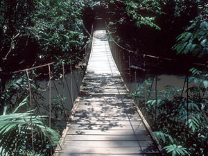 Khao Yai NP - brug in het park