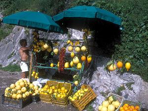 Amalfikust - citrusvruchten
