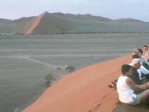 Namib Naukluft - Dune 45