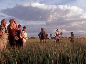Okavango delta - gamewalk