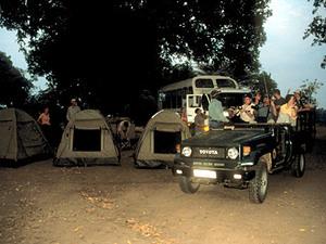 South Luangwa - nightdrive