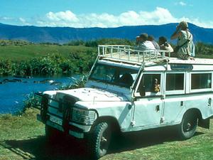 Ngorongoro – gamedrive