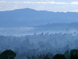 Cherangani Hills – ochtend mist