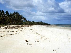 Nyali Beach - strand