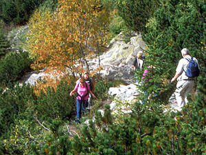 Vysoke Tatry - wandelaars