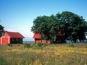 Saaremaa - huizen