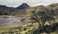 El Cajas nationaal park Ecuador Djoser