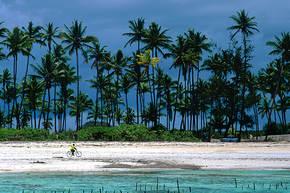 Rondreis Kenia, Tanzania & Zanzibar, 21 dagen hotel/lodgereis
