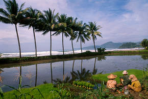 Rondreis Java, Bali & Lombok, 22 dagen