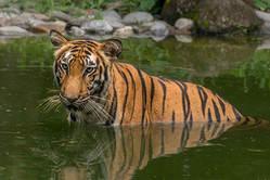 Rondreis Bangladesh