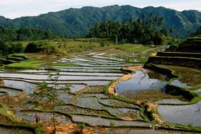 Rondreis Sumatra, Java & Bali, 21 dagen