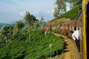 Cultuurreis Sri Lanka, 12 dagen