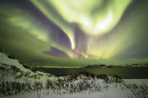 Natuurreis Rusland & Finland, 10 dagen
