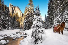 Winterreis Polen, 8 dagen