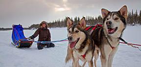 Lapland, 7 dagen