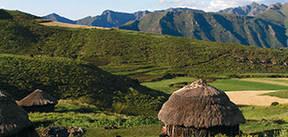 Zuid-Afrika Noord & Swaziland, 15 dagen
