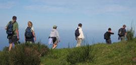 Wandelvakantie Madeira, 8 dagen
