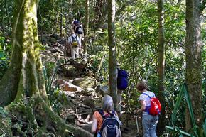 Wandel- en Fietsreis Costa Rica, 14 dagen