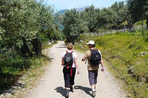 Wandelreis Mallorca, 8 dagen