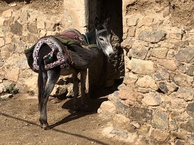 Wandelreis Marokko Herald's Foto's