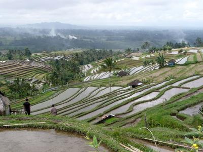 Fietsreis Bali en Lombok