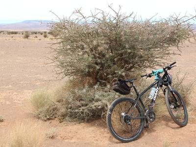 Fietsen in Marokko door het Atlasgebergte