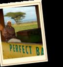 Rondreis Zuid-Afrika, Botswana, Namibië & Victoria watervallen kamperen, 24 dagen