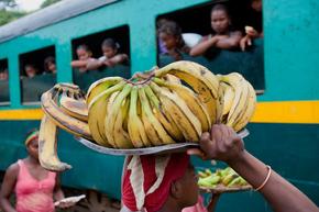 Rondreis Madagascar & Mauritius, 23 dagen