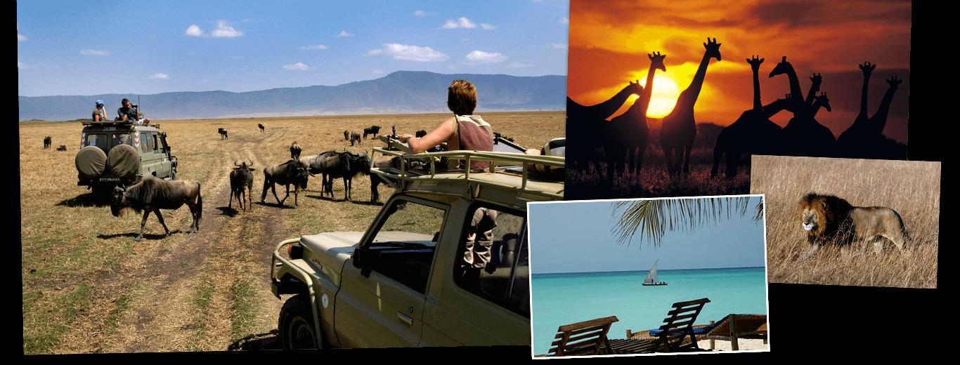 Kenia, Tanzania & Zanzibar lodge/hotelreis