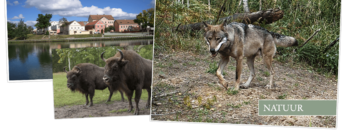Wolvenreis Wit-Rusland