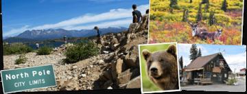 Bekijk de Rondreis Alaska, 21 dagen hotel/cabinreis van Djoser